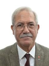 Hamza Demir(Lft)